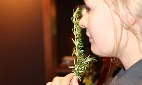 Smelling the rosemary used in the gin