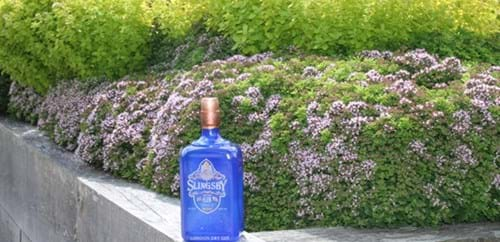 Slingsby Gin's bright blue bottle sits in front of flowering oregano
