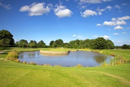 Repton Short Course Sawgrass hole
