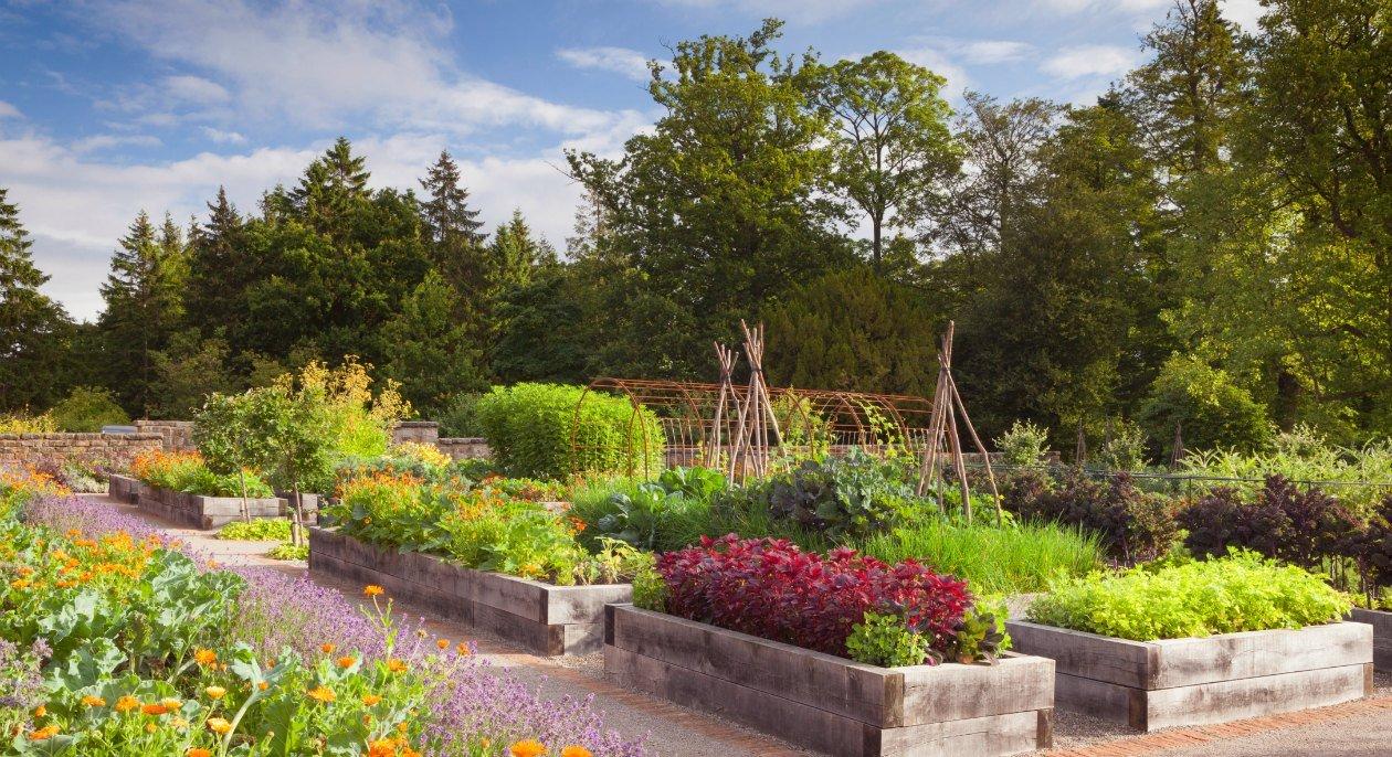 Rudding Park, Yorkshire Kitchen Garden