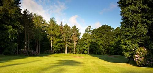 rudding park golf club hawtree course